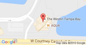 Aqua Tampa