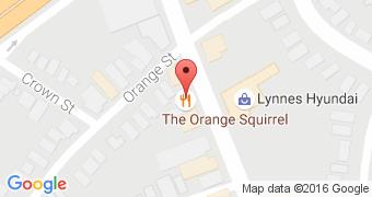 The Orange Squirrel