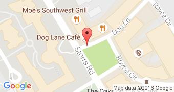 Dog Lane Cafe