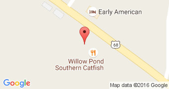 Willow Pond Southern Catfish