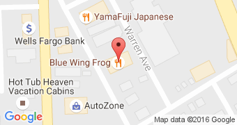 Blue Wing Frog