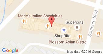 Blossom Asian Bistro