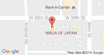 Ninja Of Japan