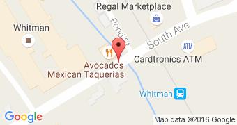 Avacado's